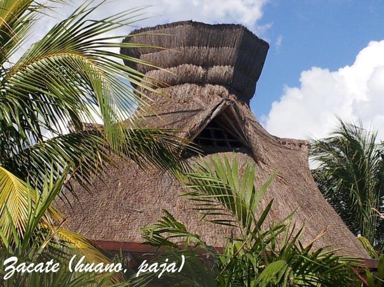 TECHADO-CON-ZACATE-HUANO-PAJA